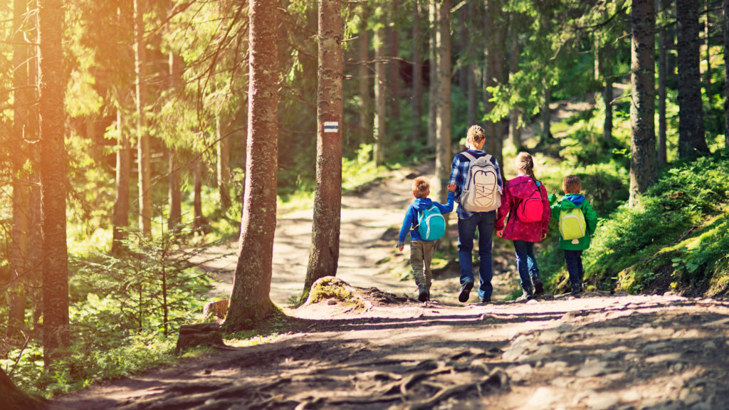mother-and-kids-hiking-in-sunny-forest-000061453110_full